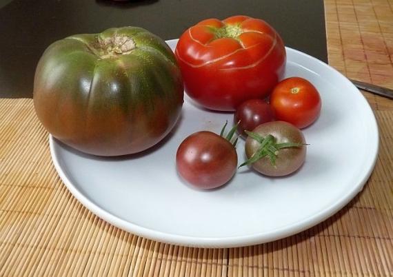 Pomidorų rinkinys